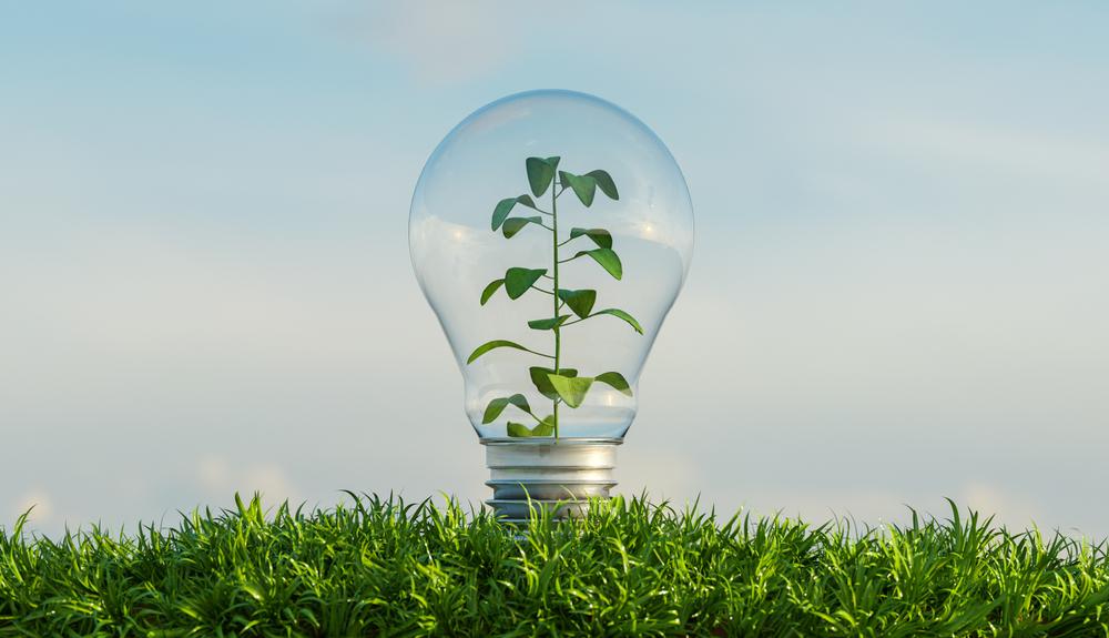 Benefícios que a Eficiência Energética pode gerar ao seu negócio